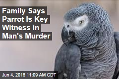 Family Says Parrot Is Key Witness in Man's Murder
