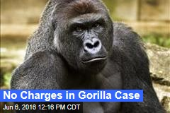 No Charges in Gorilla Case