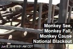Monkey See, Monkey Fall, Monkey Cause National Blackout