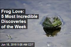 Frog Love: 5 Most Incredible Discoveries of the Week