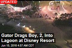 Gator Drags Kid Into Water at Disney Resort