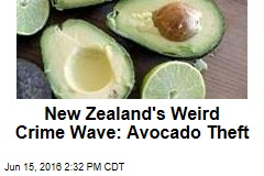 New Zealand's Weird Crime Wave: Avocado Theft