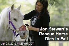 Jon Stewart's Rescue Horse Dies in Fall