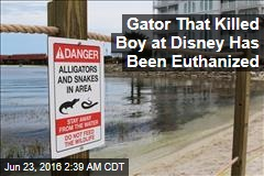 Gator That Killed Boy at Disney Has Been Euthanized