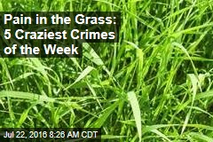 Pain in the Grass: 5 Craziest Crimes of the Week