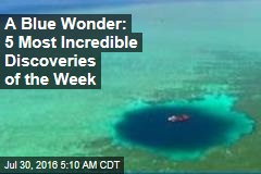 A Blue Wonder: 5 Most Incredible Discoveries of the Week