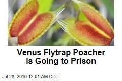 Venus Flytrap Poacher Is Going to Prison