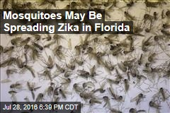 Mosquitoes May be Spreading Zika in Florida