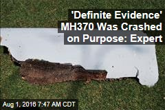 'Definite Evidence' MH370 Was Crashed on Purpose: Expert