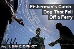 Fisherman's Catch: Dog That Fell Off a Ferry