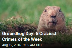 Groundhog Day: 5 Craziest Crimes of the Week