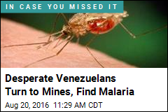 Desperate Venezuelans Turn to Mines, Find Malaria
