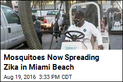 Mosquitoes Now Spreading Zika in Miami Beach