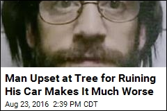 Man Upset at Tree for Ruining His Car Makes It Much Worse