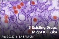 3 Existing Drugs Might Kill Zika