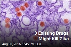 3 Existing Drugs Might Kill Zika