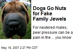 Dogs Go Nuts for Fake Family Jewels