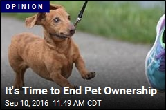 It's Time to End Pet Ownership