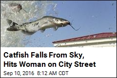 Catfish Falls From Sky, Hits Woman on City Street