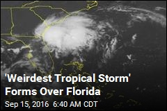 'Weirdest Tropical Storm' Forms Over Florida