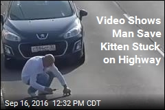 Video Shows Man Save Kitten Stuck on Highway