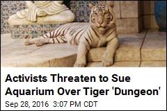 Activists Threaten to Sue Aquarium Over Tiger 'Dungeon'