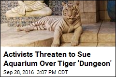 Activists Threaten to Sue Aquarium Over Tiger 'Dungeon'