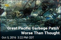 'Great Pacific Garbage Patch' Far Worse Than Thought