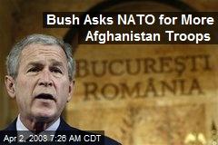 Bush Asks NATO for More Afghanistan Troops