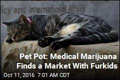 Cannabis as Catnip? The New Frontier in Medical Marijuana