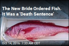 The New Bride Ordered Fish. It Was a 'Death Sentence'