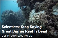 Scientists: Stop Saying Great Barrier Reef Is Dead