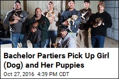 Bachelor Partiers Pick Up Girl (Dog) and Her Puppies
