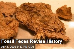 Fossil Feces Revise History