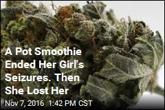 A Pot Smoothie Ended Her Girl's Seizures. Then She Lost Her