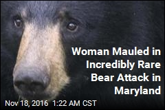 Woman Mauled in Incredibly Rare Bear Attack