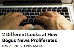 2 Different Looks at How Bogus News Proliferates