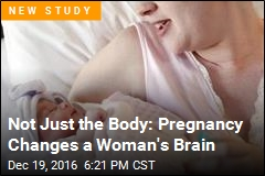 Pregnancy Changes a Woman's Brain—for Years