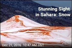 Stunning Sight in Sahara: Snow