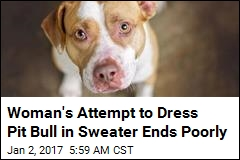 Dog Attacks Owner as She Tried to Put a Sweater on Him