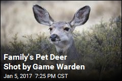 Family's Pet Deer Shot by Game Warden