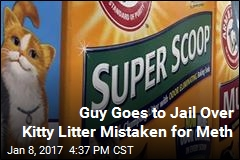 'Meth' That Landed Guy in Jail Turns Out to Be Cat Litter