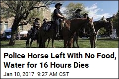 Cop Loses Vacation Day After His Police Horse Dies