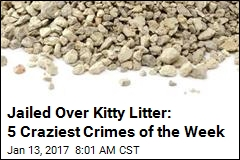 Jailed Over Kitty Litter: 5 Craziest Crimes of the Week
