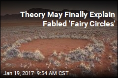 Theory May Finally Explain Fabled 'Fairy Circles'