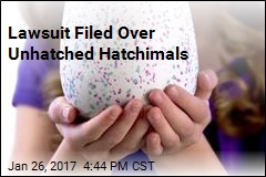 Lawsuit Filed Over Unhatched Hatchimals