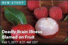 Deadly Brain Illness Blamed on Fruit