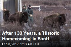 After 130 Years, a 'Historic Homecoming' in Banff