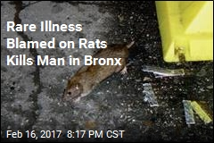 NYC Rats Blamed for Deadly Illness