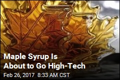 Maple Syrup Is About to Go High-Tech